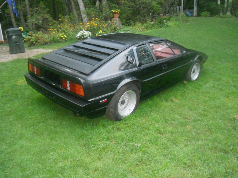 lotus esprit for sale